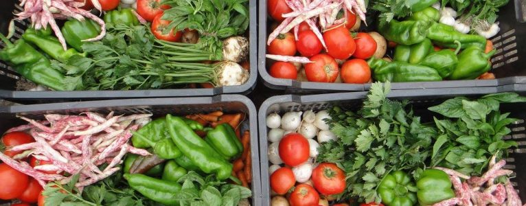 Upcoming Event: Managing Diversity in Agroecological and Permaculture Systems