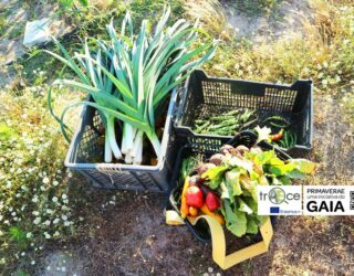 PrimaverAE 2021 – encounters for an agroecological spring 2021